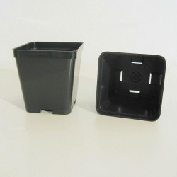 Square Pot Q2 7x7x8 cm