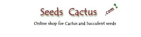SeedsCactus.com