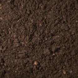 Sphagnum peat from Ireland